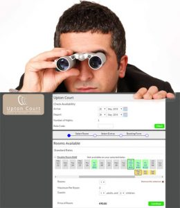 Man with binoculars looking at a webpage
