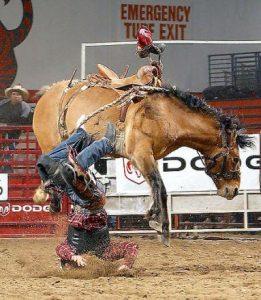 Horse unseats rider.